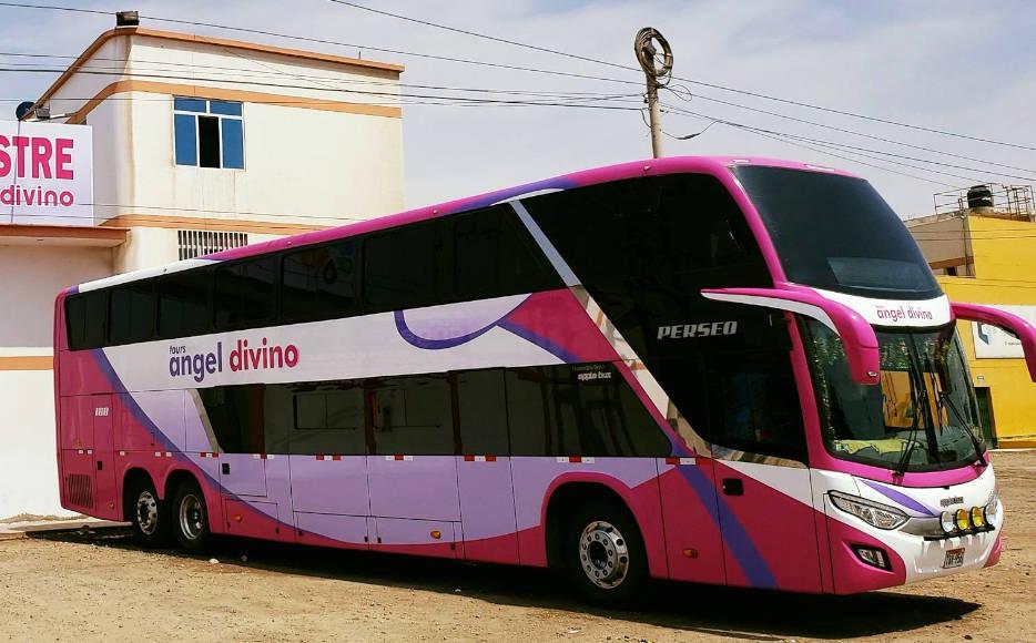 Angel Divino Bus