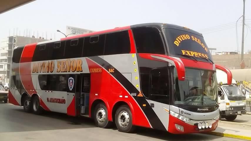 Divino Señor Express  Bus