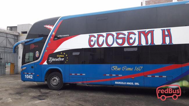 Ecosem H Bus