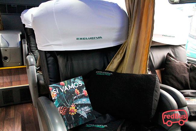 Interior del Bus Excluciva