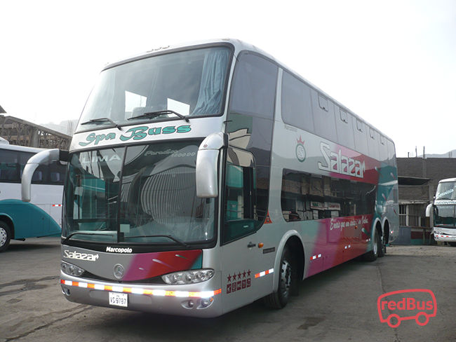 Transporte Salazar Bus