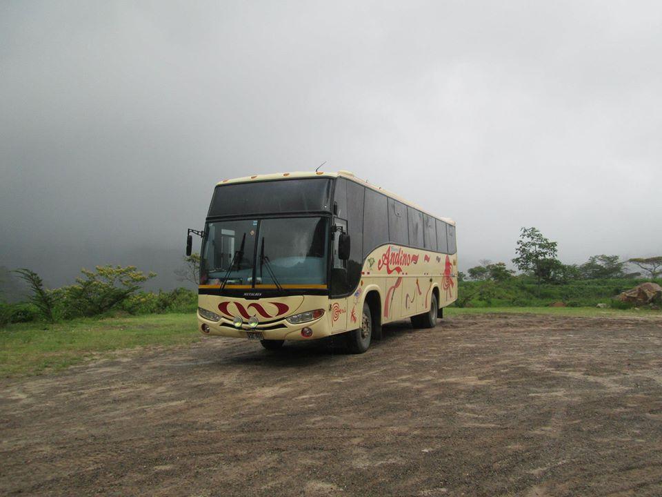 Viajar en Transportes Andino