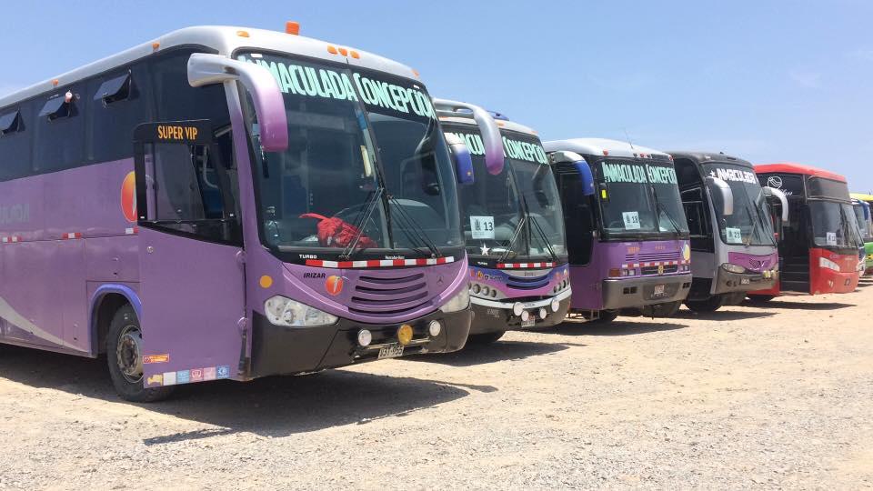 Transportes Inmaculada Bus