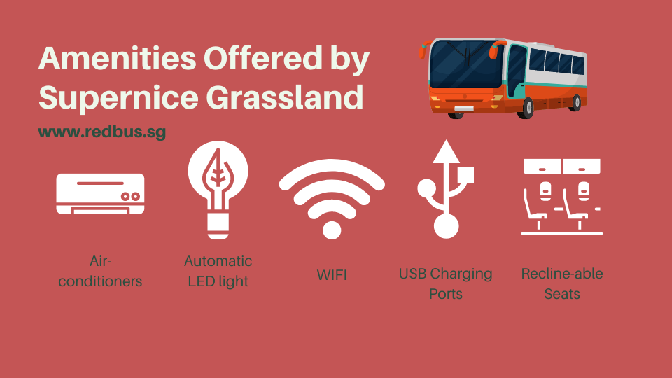 amenities by supernice grassland bus